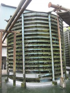 Algae in the cooling tower
