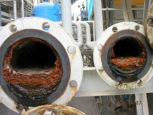 Biofouling without Merus