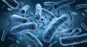legionella in water