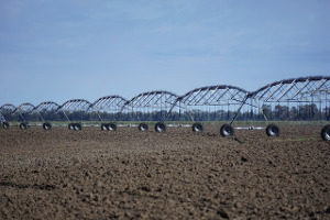 Artificial irrigation in agriculture using pivots