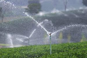 Impact Irrigation